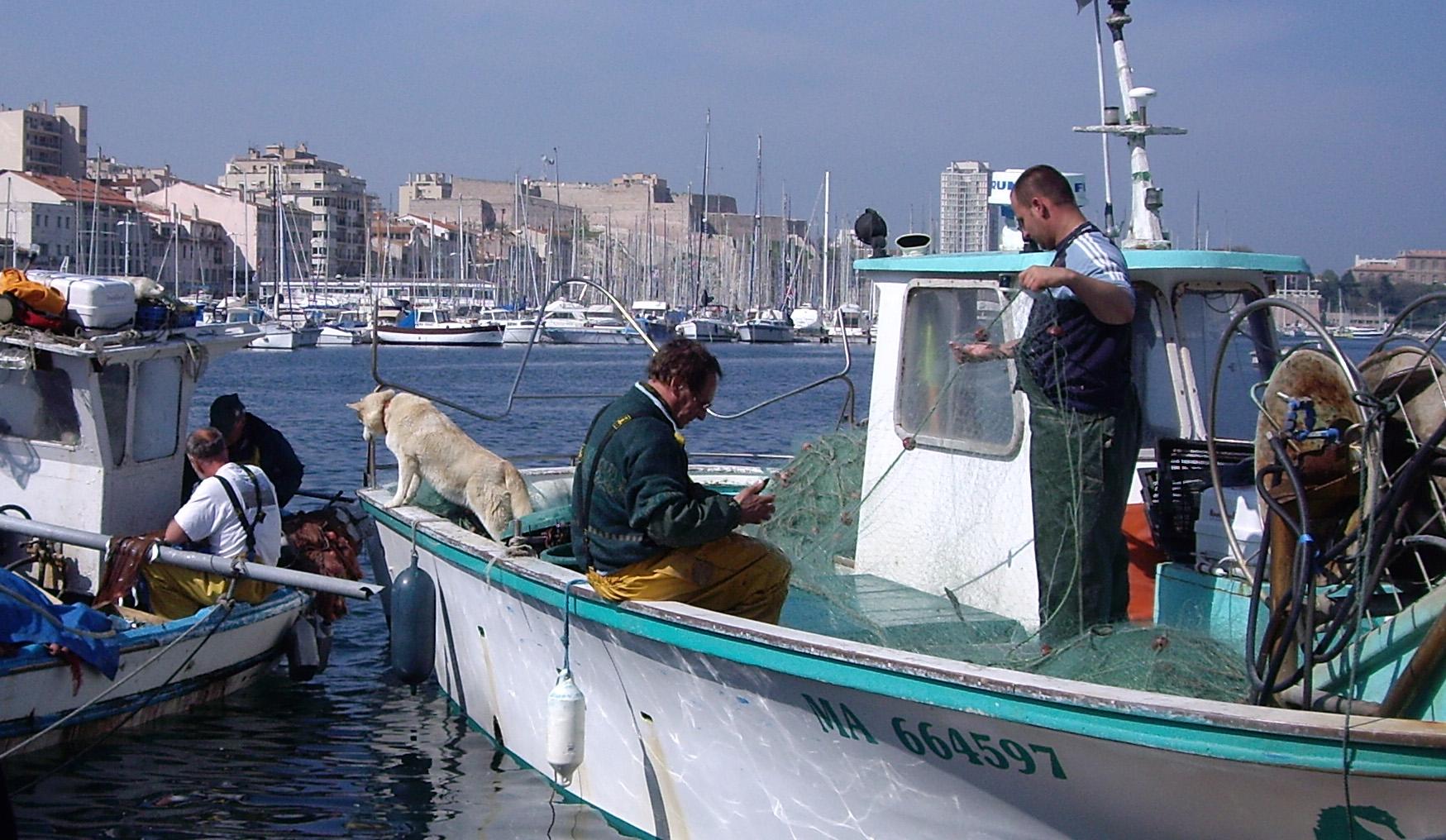Le film sur la pêche regarder en ligne à la période dhiver