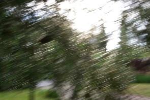 La pluie 2