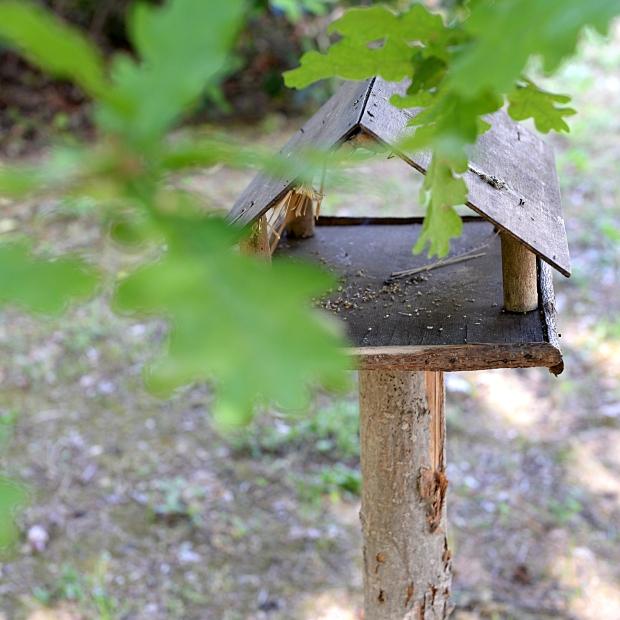 La maison à oiseaux