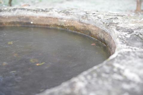 Le bassin en hiver